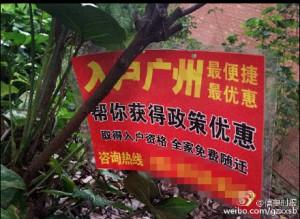 入户广州 选择合法正规